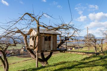 Baumhaus - Baumhütte am Bauernhof mit schöner Landschaft