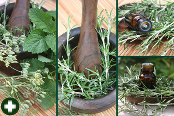 Huiles essentielles  - Plantes médicinales