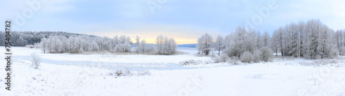Winter landscape with frozen lake and snowy trees - 75404782