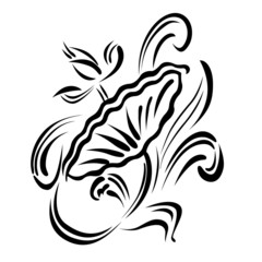 Abstract lotus pattern
