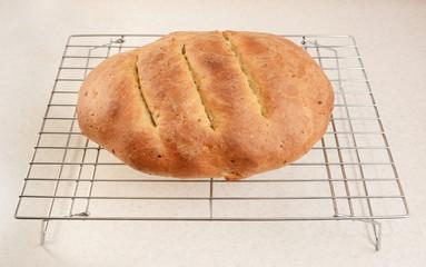 Freshly baked bread cooling after baking