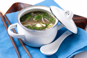 vietnamese pho chicken soup