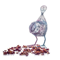 Wire Bird with Flower Petals on a wite background