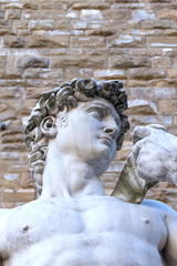 The famous David sculpture in Florence (Italy)