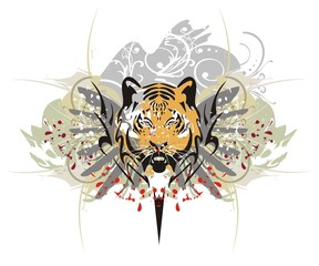 Tiger head splashes