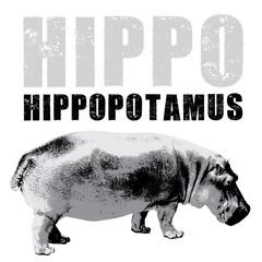 Hippopotamus vector, rubber stamp