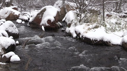 Stream in Winter Landscape Zoom In
