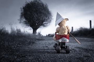 Little Teddy Bear Adventure Trip