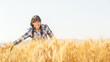 Smiling beautiful young brazilian girl on a yellow crop field