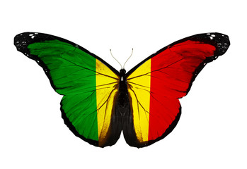 Mali flag butterfly flying, isolated on white background