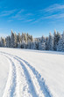 Winter road in Beskid Sadecki Mountains on sunny day, Poland