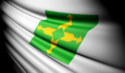Flag of Brazil (Distrito Federal)