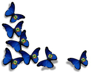 Vermont flag butterflies, isolated on white background