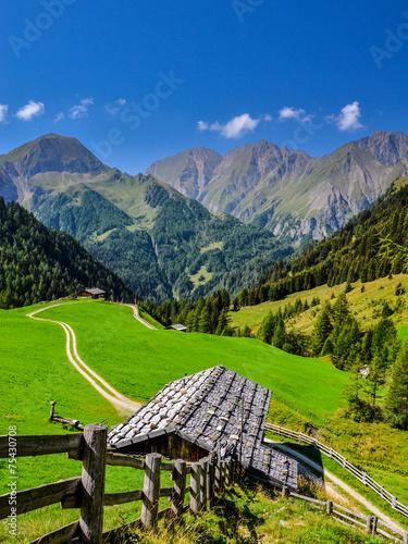 Leinwandbild Motiv Sommer in den Bergen