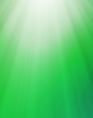 Natural green abstract background with lights