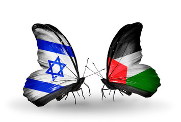 Two butterflies with flags Israel and Palestine