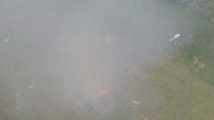 Smoke and Particles Above the Fire