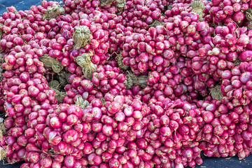 Lots of red shallots bulbs