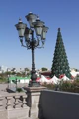 Macro Plaza Monterrey - Xmas Tree season
