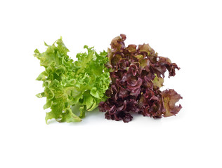 close up of green and red lettuce isolated on white background