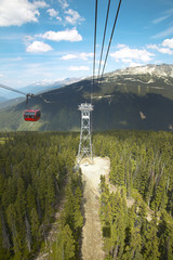 Chair lift and forest in Whistler. British Columbia. Canada