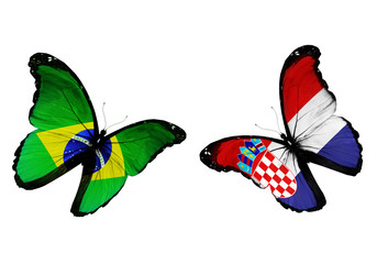 Concept - two butterflies with Irish and Croatian flags