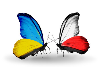Two butterflies with flags Ukraine and Poland