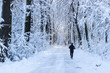 Man running in the forest in winter time - 75445380