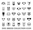 Breed dog collection icon, vector. - 75447945