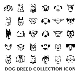 Breed dog collection icon, vector.