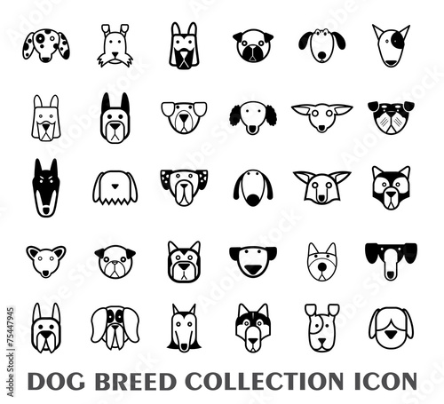 Fototapeta Breed dog collection icon, vector.