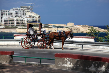Maltese Karozzin carriage overlooking Fort Tigne, Malta
