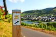Schild Moselsteig - 75450560