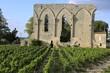 Gotische Spitzbogenfenster der Grandes Murailles in St.-Emilion - 75451379