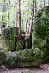 Druidenhain Fränkische Schweiz