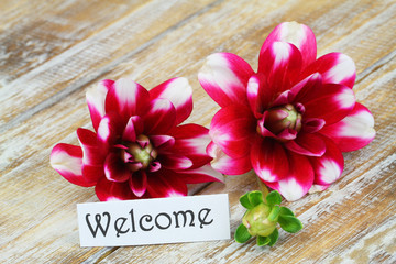 Welcome card with dahlia flowers on rustic wooden surface