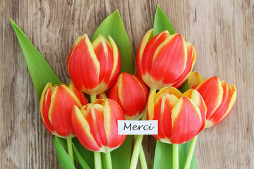 """Merci"" card, ( thank you in French), with red and yellow tulips"