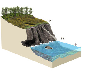 3d model terrain cliff ecosystem