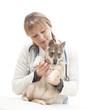 female vet and puppy huskies