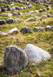 curves of rocks