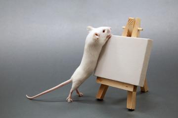 La souris artiste