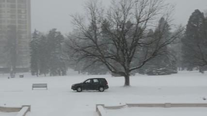 Lone car driving through a park in a snow storm
