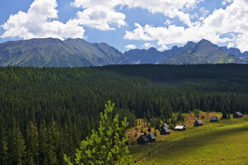 View of the valley Olczyska in the Polish Tatras