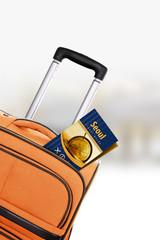 Seoul. Orange suitcase with guidebook.