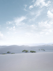 white dunes
