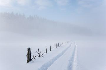 campagne enneigée sous la brume