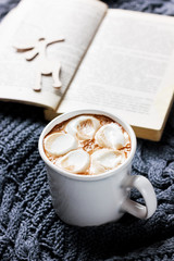 vintage Cup of hot cocoa or hot chocolate with marshmallows