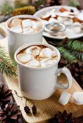 vintage hot Cup of cocoa or chocolate with marshmallows