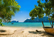 Exotic beach with palms and boats on azure water, Phi Phi Island