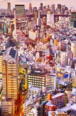 東京の新宿副都心の夕景